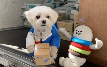 Abandoned Dog Turned Honorary Delivery Worker Donates Animal Food