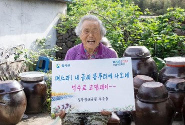 Grandma Fonts Gain Popularity for Invoking Nostalgic Feel, Motherly Care