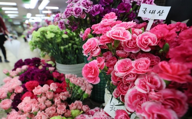 Carnations are on sale at a flower market in southern Seoul. By tradition, children give carnations to their parents to show their appreciation, raising the price of the flower around this time of year.  (Yonhap)