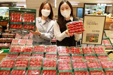 Exports of Strawberries Up 25 pct in Jan.-May period