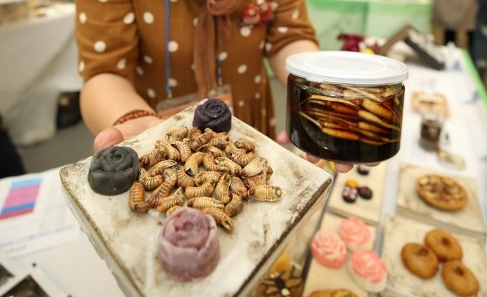 S. Korean Insects Industry Grows 2 pct in 2020