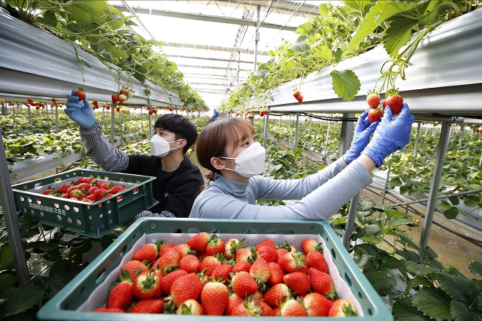 Exports of Farm Goods Hit All-time High in H1