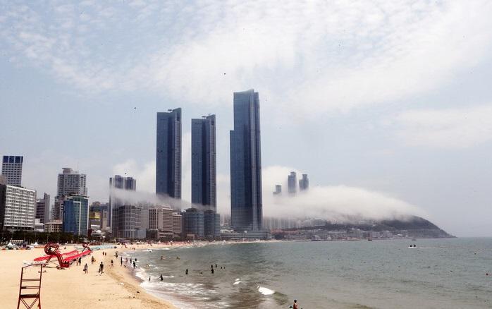 S. Korea Develops AI Technology to Predict Sea Fog
