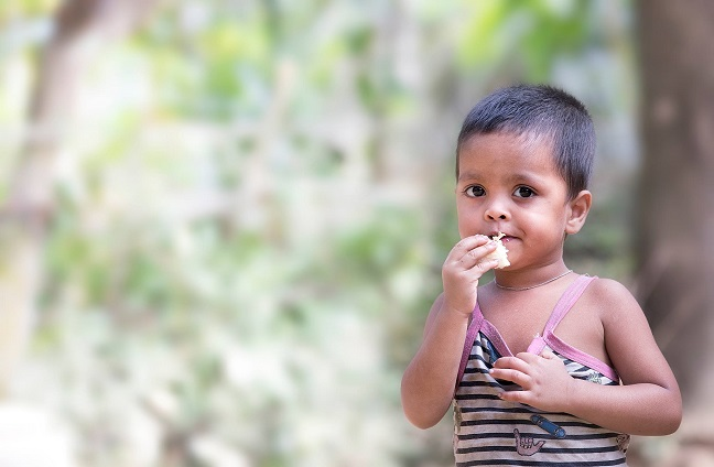Companies Pledge Millions to End Hunger in the World by 2030 as Part of the Zero Hunger Private Sector Pledge
