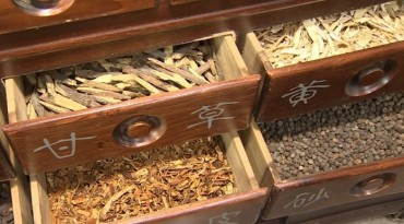 Oriental Medicine for Obesity Treatment Effective Against Depression