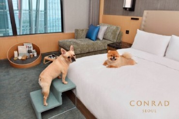 Lodging Businesses Compete to Meet Demand for 'Pet-cations'