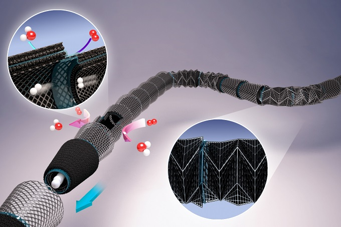 Basic Science Institute Develops Ultra-small Straw-Shaped Fuel Cell that is Light and Bendable