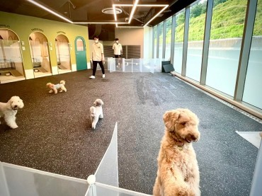 Department Stores and Shopping Malls Appeal to 'Pet-fams'