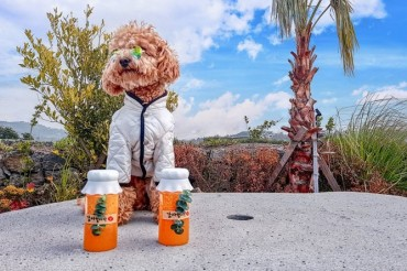 Jeju Becomes Most Popular Travel Destination for Pet Owners